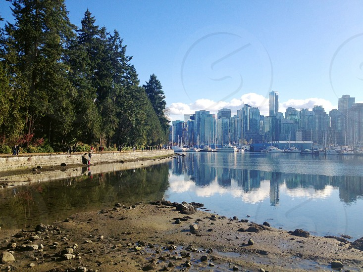Stanley park Vancouver. photo