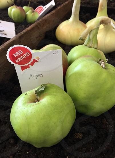 Apple green organic farm grown harvest fair  photo