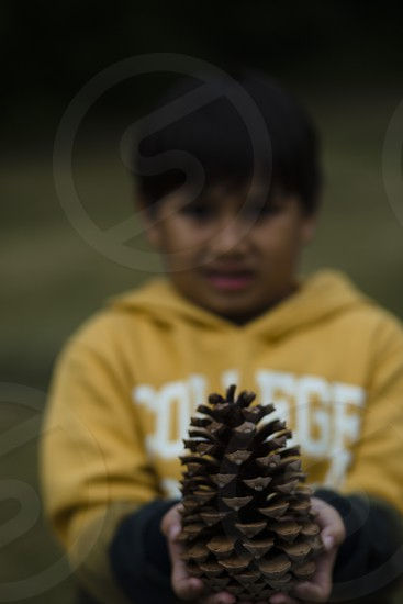 young boy holding a pine cone with both hands photo