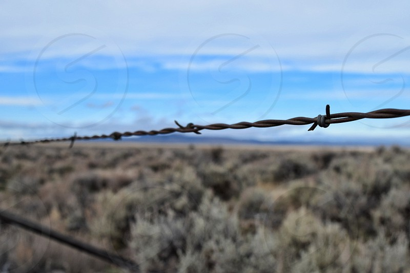 barbed wire on highway 20 heading to Idaho photo