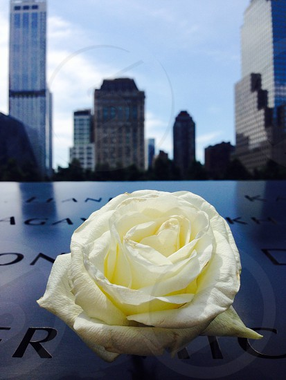 New York City. 9/11 memorial.  photo