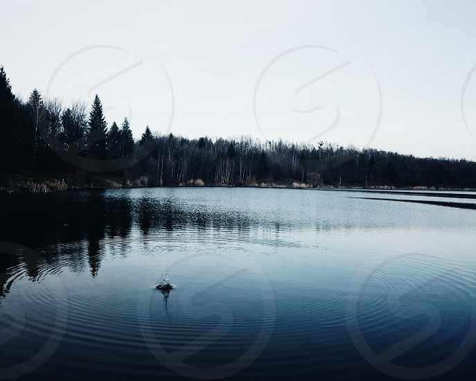 water lake quiet explore create folk landscape season nature view outdoor reflection photo