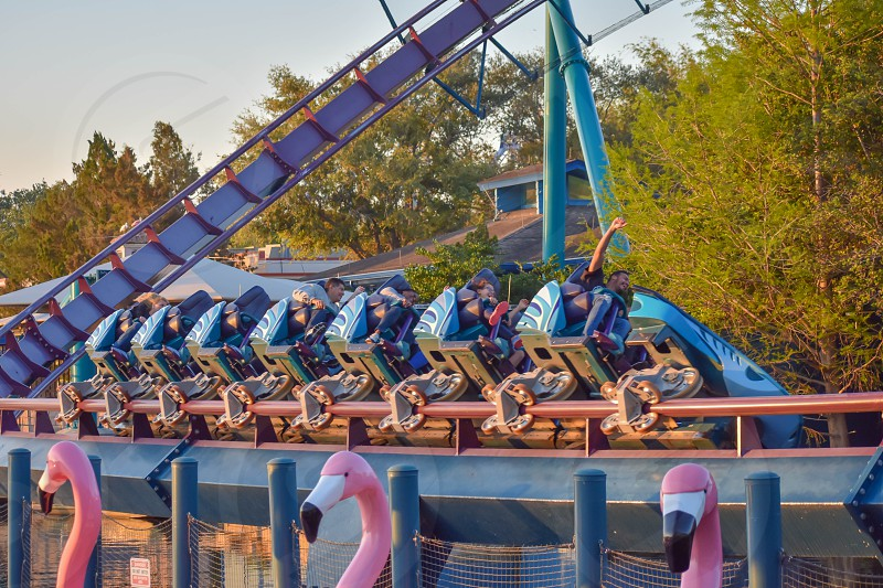 Orlando Florida. March 09 2019. People enjoying Mako Rollercoaster at Seaworld in International Drive area (2) photo