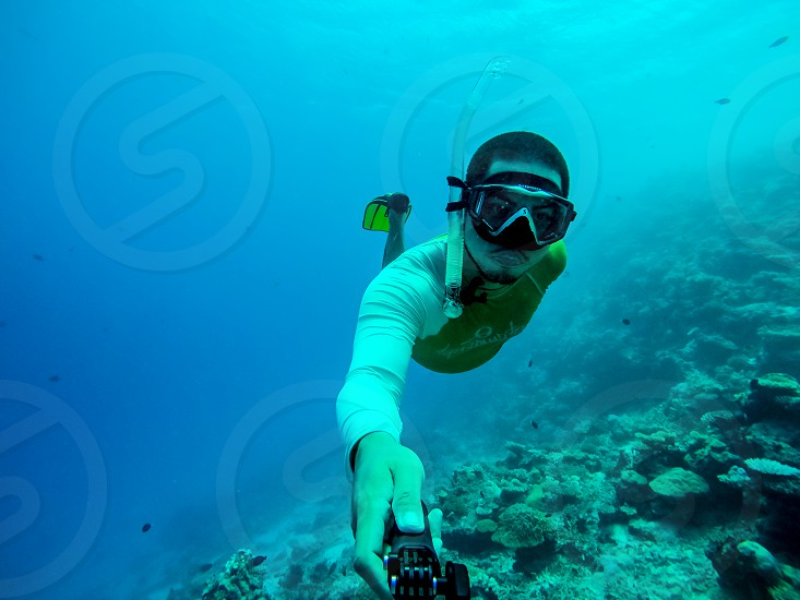 freediving snorkeling Maldives sea ocean blue azure cerulean marine aquatic diving apnea photo