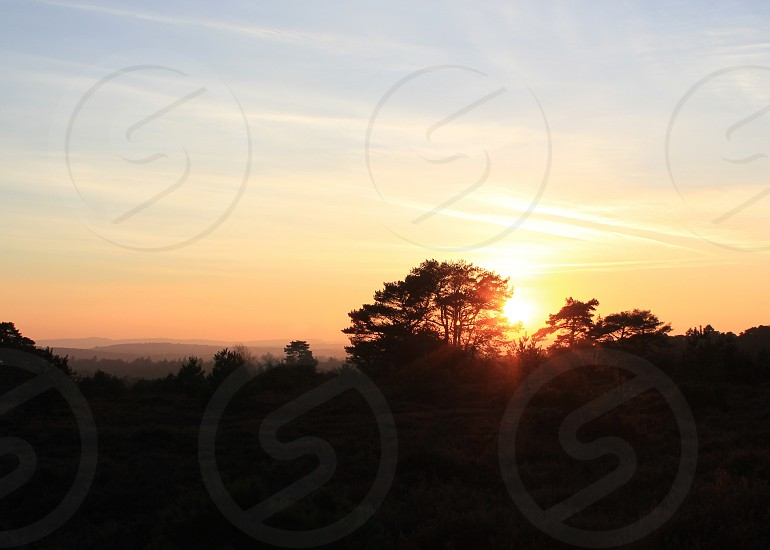 Winter Sunset on Hindhead Common photo