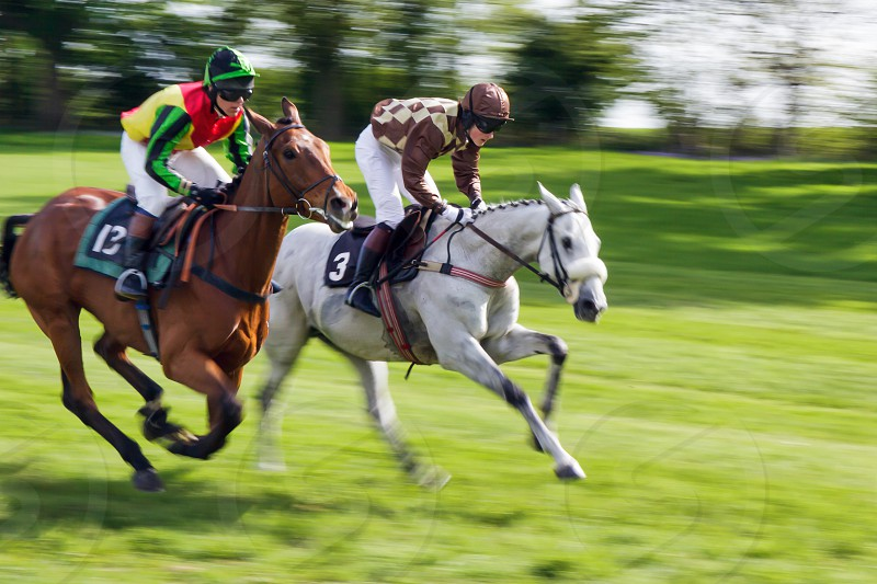 Point to Point Racing at Godstone photo