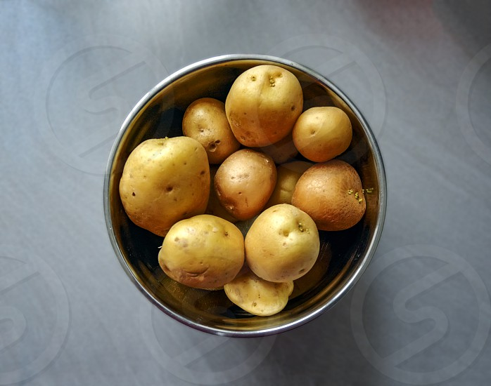 group of raw potatoes to be peeled in a metal bowl. Vegetarian food. Concept of food preparation and ingredients photo