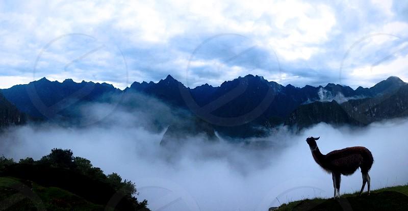 cloud-covered sunrise at machu picchu. photo