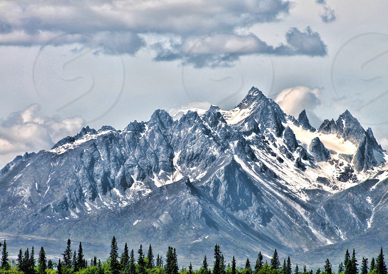 pine trees at the bottom of a rugged snow capped mountain range under a cloudy sky photo