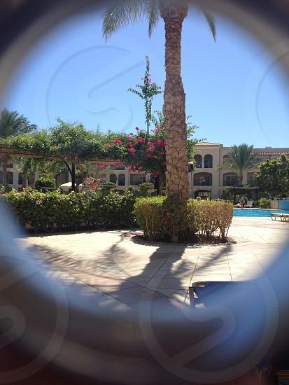 Looking through my wedding ring at a resort pool photo
