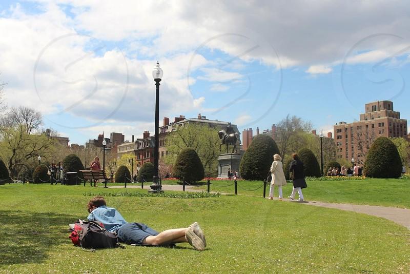 man lying on tummy on park photo