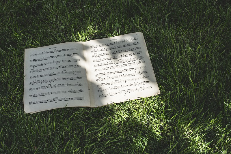 Music book on green meadow. Daylight photo