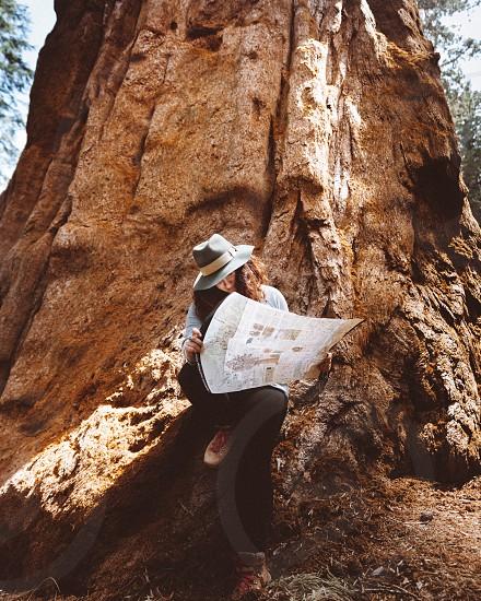 Sequoia national park California park road trip map explore adventure  photo