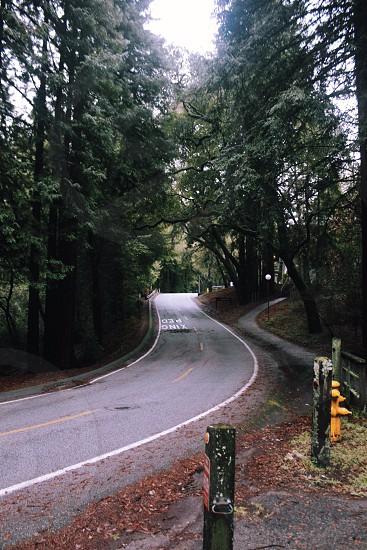 mountain roadway view photo