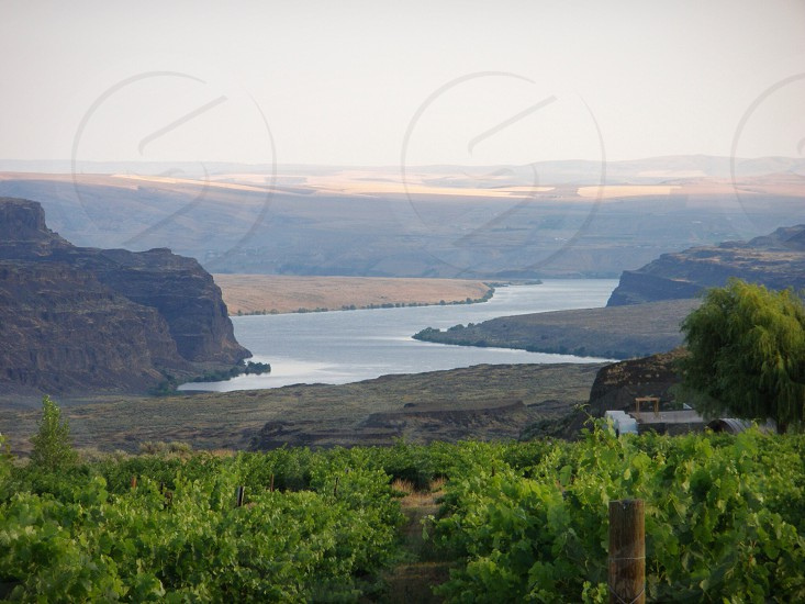 Columbia River Gorge Winery photo