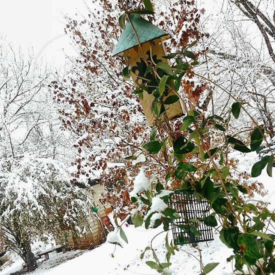 winter storm take 1.. photo