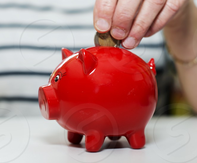female hand putting euro in money pig photo