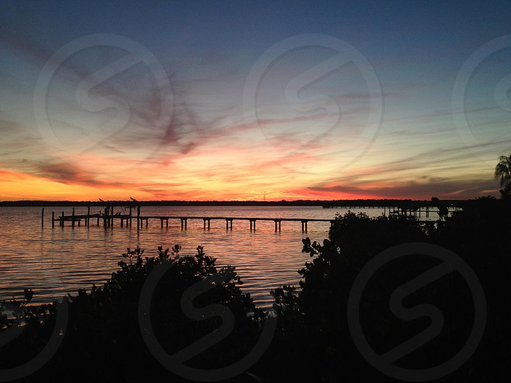 Sunset at Tampa Bay. Oldsmar FL photo