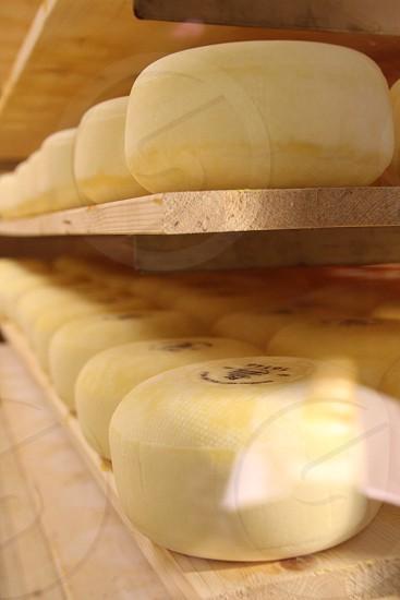 Netherlands Holland cheese factory shelf yellow photo