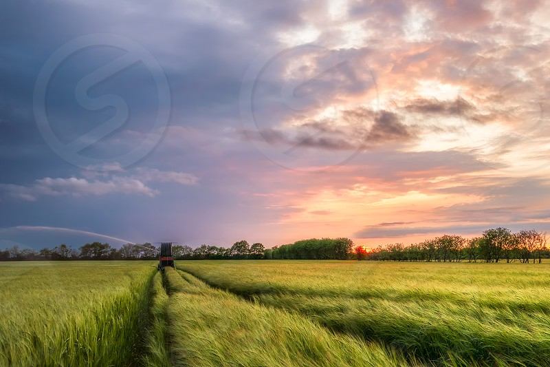 A dramatic sunset over a crop field in Denmark. Agriculture Denmark Field sunset clouds weather crops photo