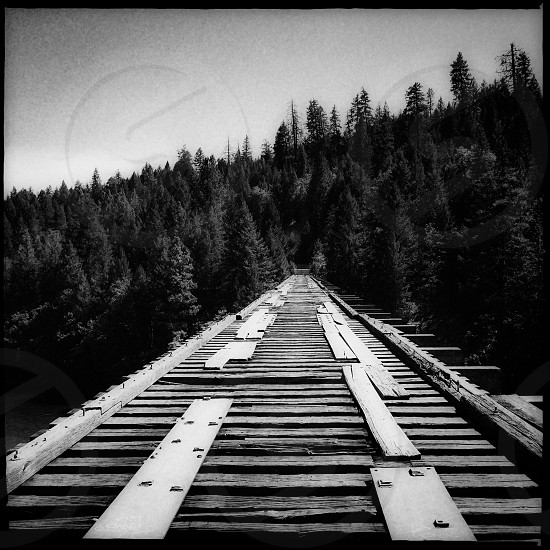 Outdoor day vertical portrait black and white monochrome filter bridge railroad bridge track rail trains tracks derelict disused unused wood sleepers railroad Burney California CA United States US USA West Western West Coast Eagle Mountain Road McCloud River Railroad Lake Briton Lake Shasta Rail Trail Movie movies movie locations Stand By Me Hollywood iconic scene view vista photo