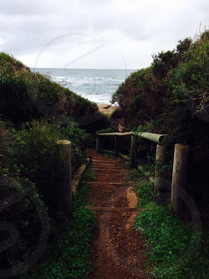 Pathway to the beach.  photo