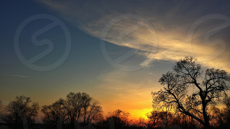 Sunset Tree Fall Leafless Sky Clouds Place Colorful Sun photo