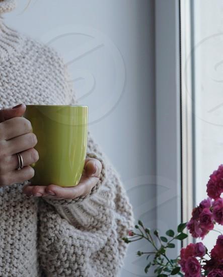 Tea cozy sweater flowers window home photo