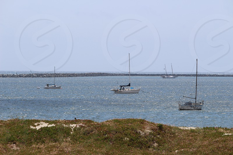 several sailing boats near ground covered by grasses under gray sky during daytime photo
