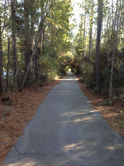 Burroughs Park trail Tomball TX photo