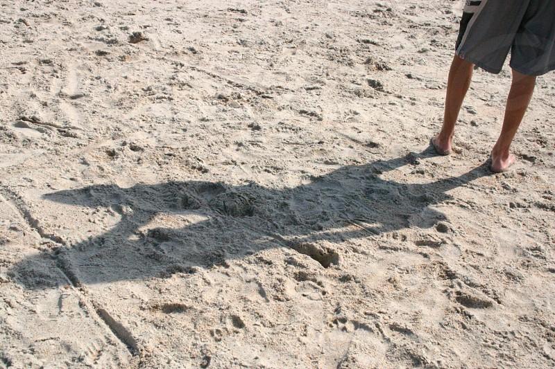 man in grey shorts standing on seashore photo