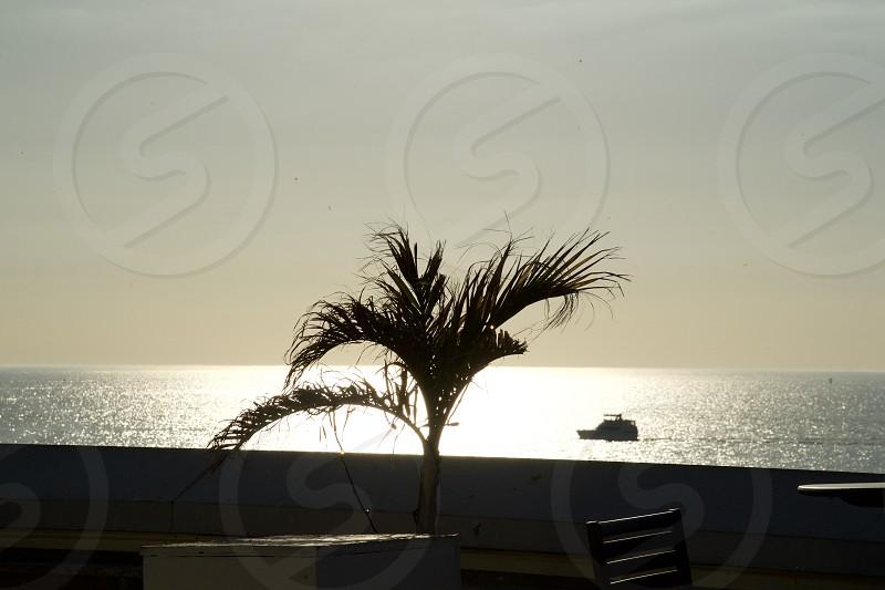 Natural light rays photo