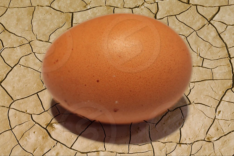 Sometimes it's not the Egg that's cracked photo