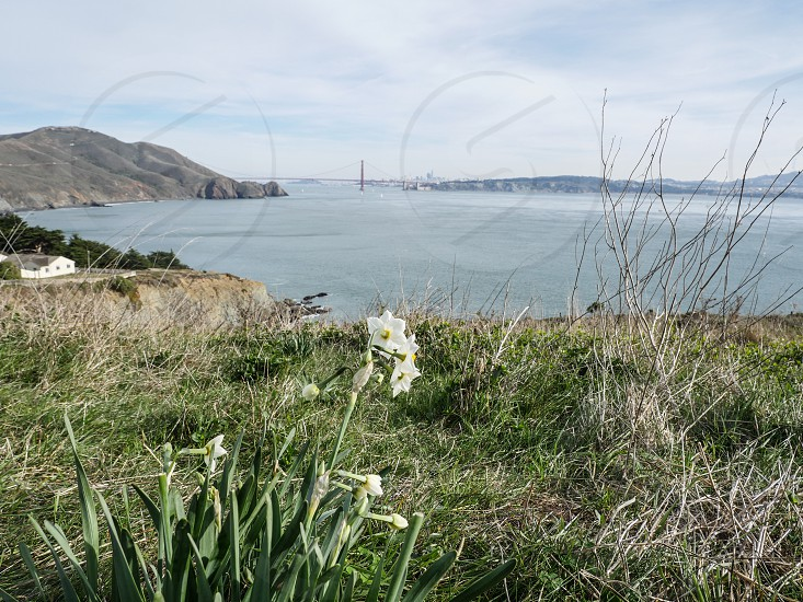 Marin Headlands with view of Golden Gate Bridge  photo