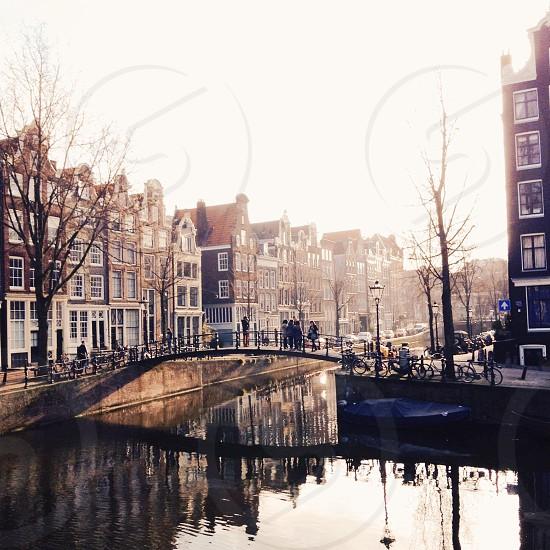 Golden hour in Amsterdam. photo