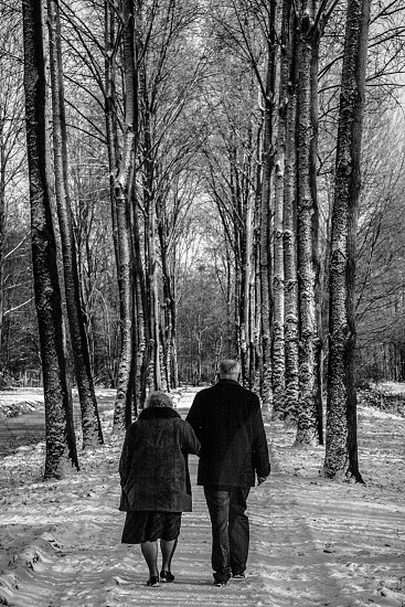 A couple man and woman are walking on a path in a forest. It is winter and there is snow on the ground and on the trees. The couple walks away from the camera. photo