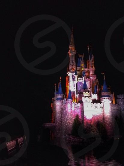 Walt Disney World in Orlando FA photo