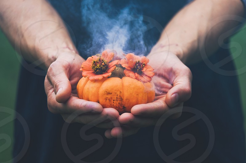 Hands holding smoking pumpkin with flowers. photo
