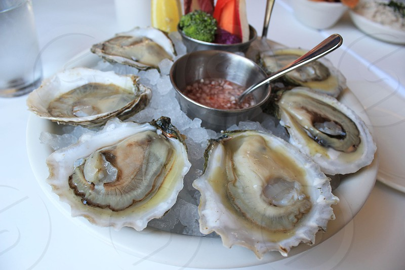 Oysters Oyster Plate Restaurant Food photo