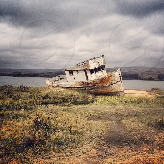 brown and white shipwreck  photo