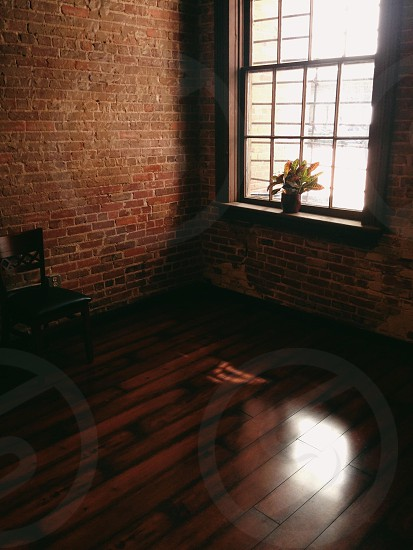 room with brick wall and plant in window photo