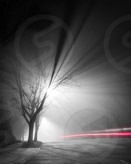 Foggy Light Trail photo