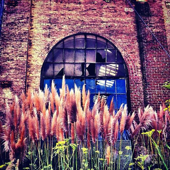 brick building with cracked windows photo