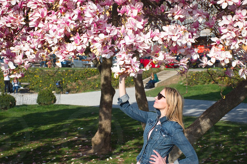 Portrait of the young woman with the magnolia tree photo