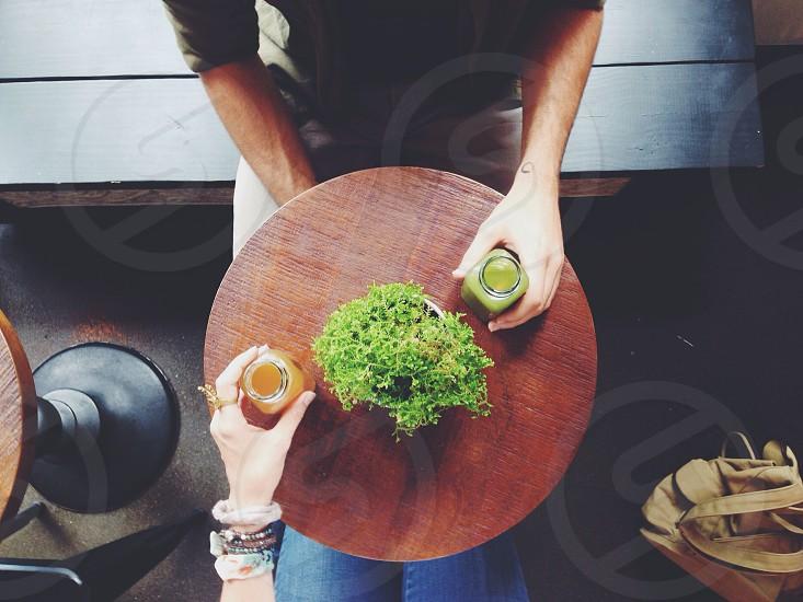 green bonsai tree on table photo