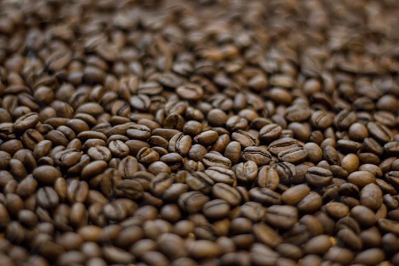 Coffee beans on table photo