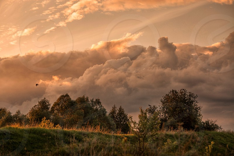 Evening landscape with dark cloudy sky  photo