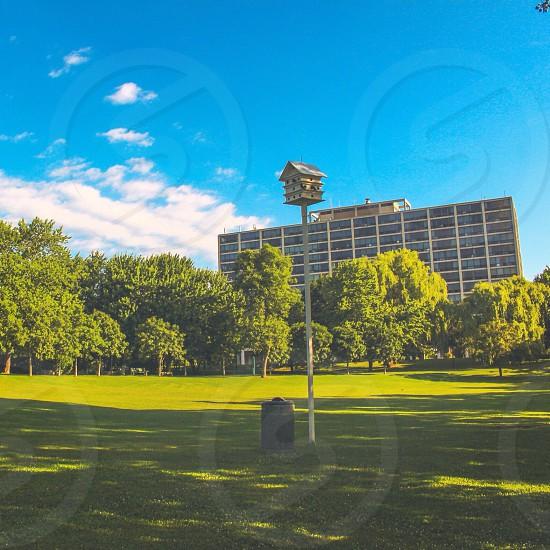 Summer Vibes 🐥 Shot of Ile des soeurs beautiful park.  photo