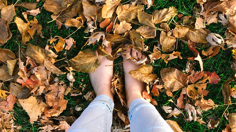 Feet leaves autumn fall nature outside grass  photo