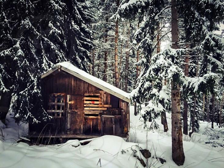 Cabin in the Mountains. Bansko Bulgaria. photo